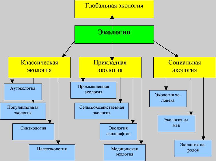 Экология схемы таблицы