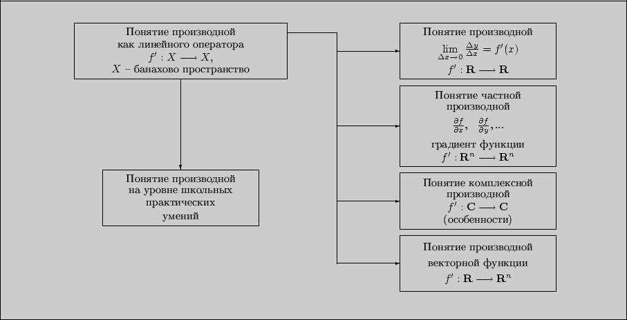 Схема видовых проявлений